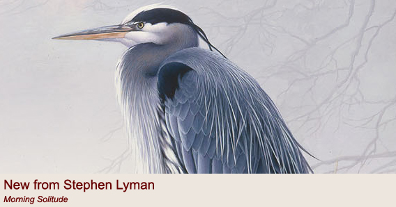 """Morning Solitude"" by Stephen Lyman"