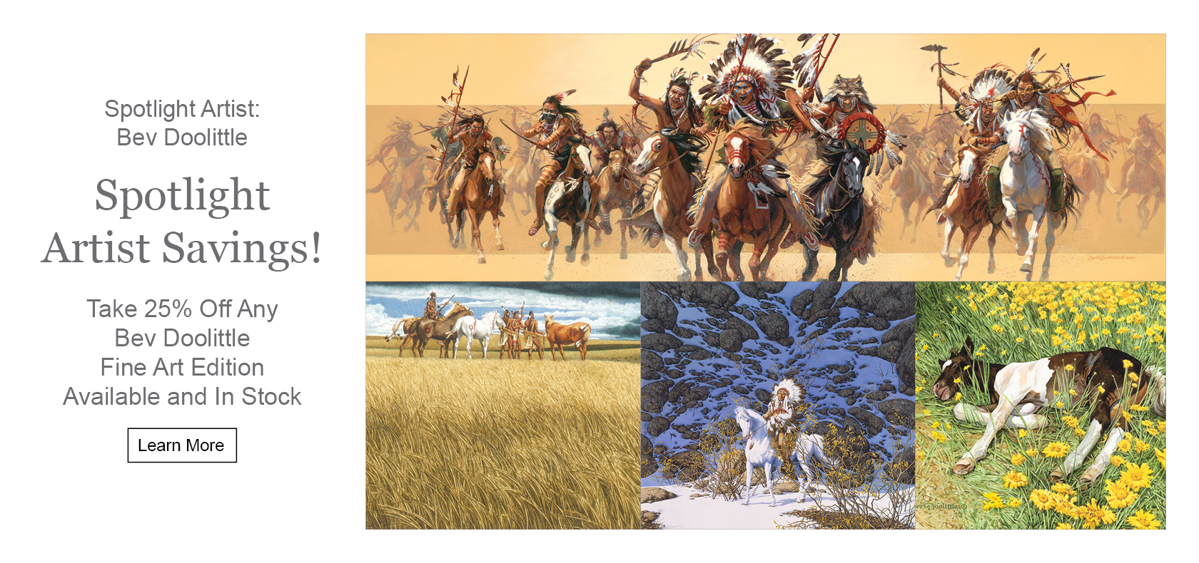 Spotlight Artist Bev Doolittle
