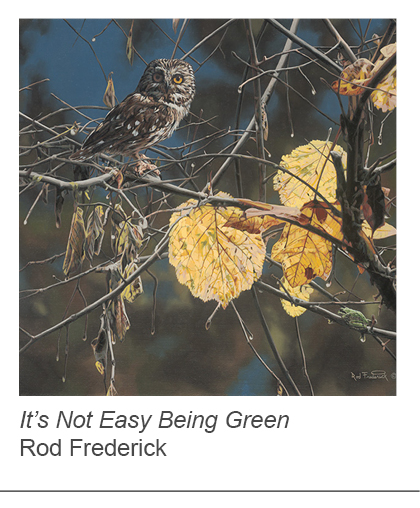 """It's Not Easy Being Green"" by Rod Fredericks"